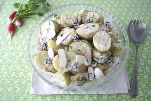 jersey potato and radish salad