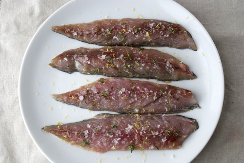 curing mackerel